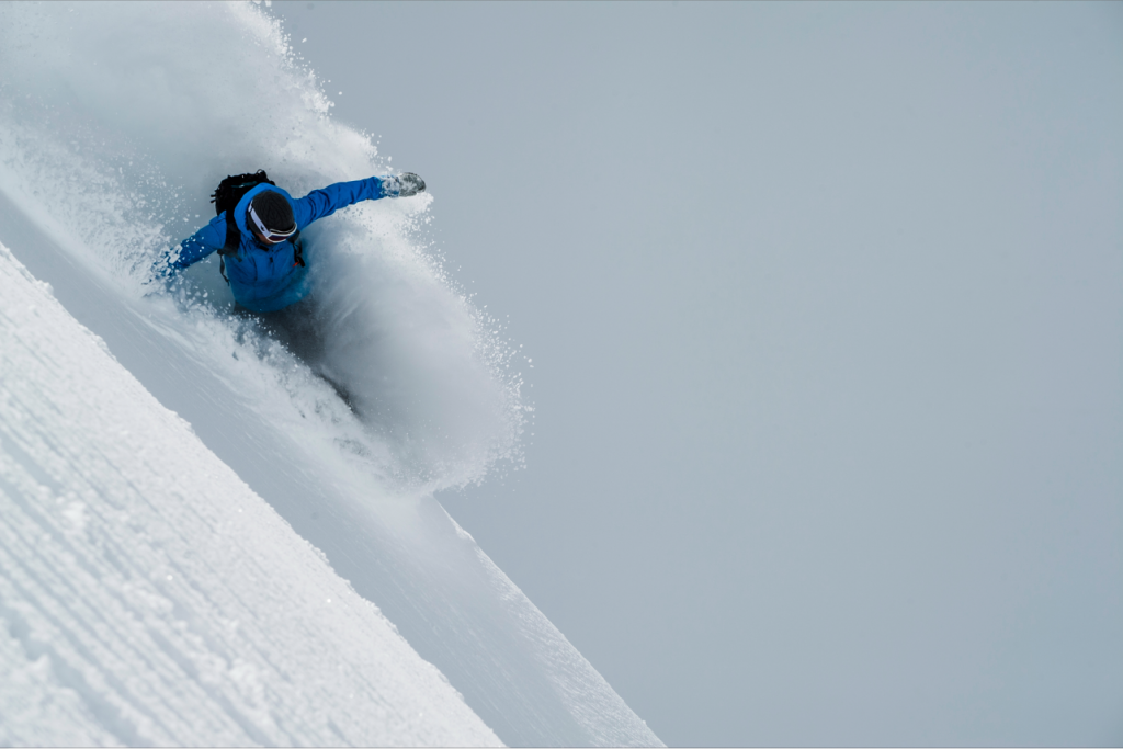 Swapping transition for pow. Photo: Animal